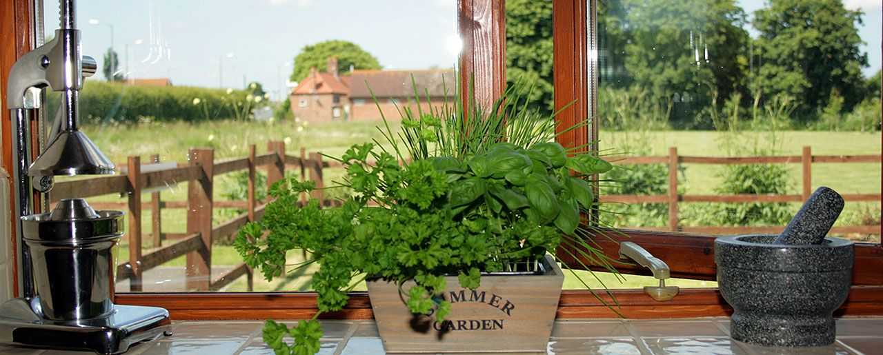 Herb garden on windowsill overlooking the grass paddock